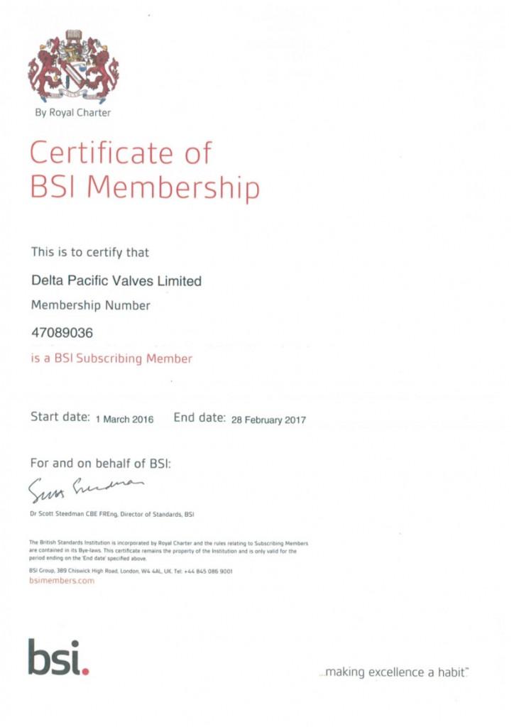 Bsi Certificate Delta Pacific Valves
