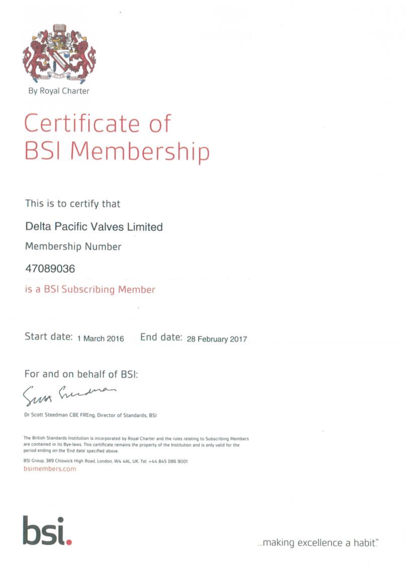 BSI 2016-17 Certificate